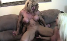 Ashlee Chambers, Wildkat And A BBC