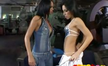 Two appealing brunette lesbian vixens touching their